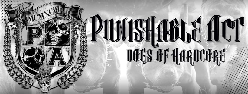 Punishable Act - Record Release + Special Guest