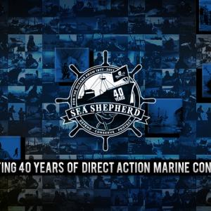 Sea Shepherd Stand Fast Party incl. Buffet, Liveschaltung und Konzert