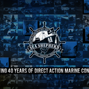 Sea Shepherd Stand Fast Party